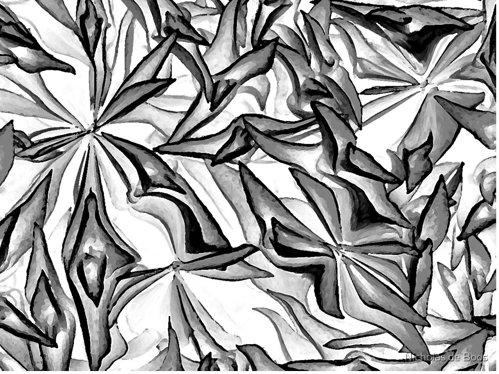 Charcoal by Nicholas de Boos