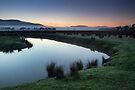 Woori Yallock Creek by Timo Balk