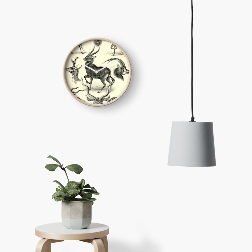 Antilope - Ernst Haeckel Clock