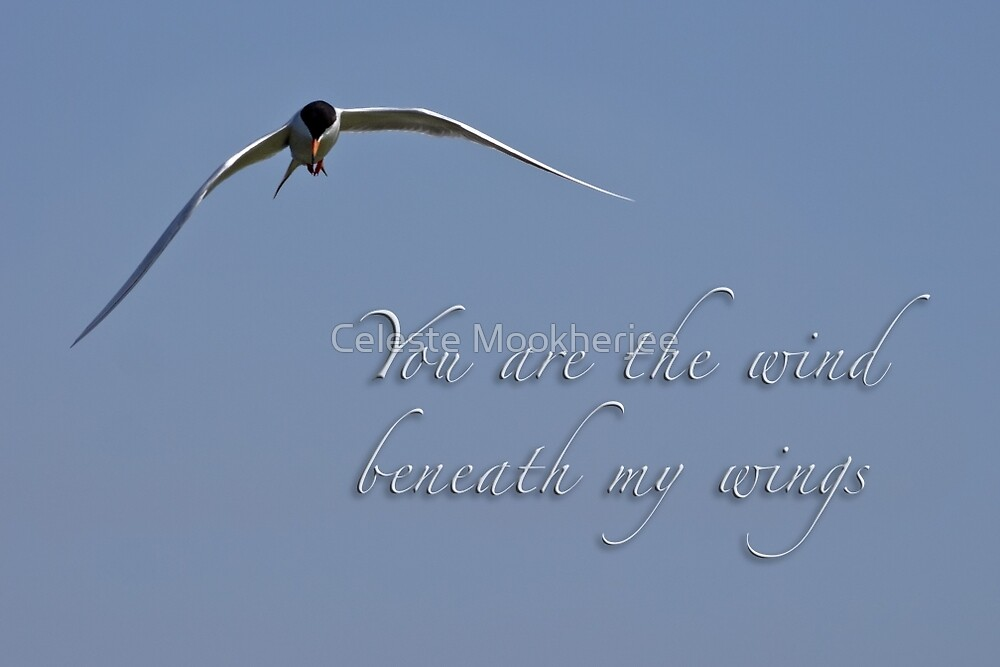 Wind beneath my wings by Celeste Mookherjee