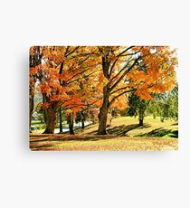 """""""Fall at Mountain Home, Tennessee""""... prints and products Canvas Print"""