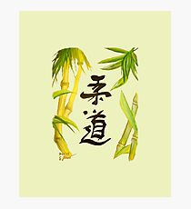 JuDo - the gentle way in olive Photographic Print