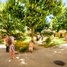 Impression of Summertime in Van Gogh Square, Arles by MarcW