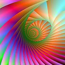 Spiral Shell by Objowl
