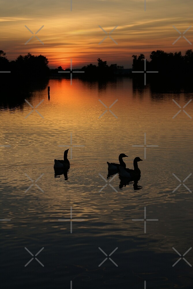 Three is a crowd  by AnnieSnel