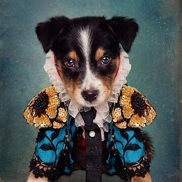 Shelter Pets Project - Loki (Blue) by TammySwarek