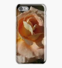 Touch of the Sun iPhone Case/Skin
