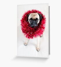 Tinsel Pug Greeting Card