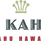 Big Kahuna Oahu Hawaii by Frank Schuster