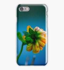 Yellow Flower on Soft blue background.  iPhone Case/Skin