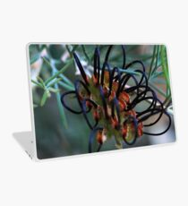 Grevillea calliantha Laptop Skin