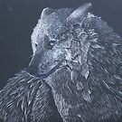 Subtracted Wolf by kruzadar
