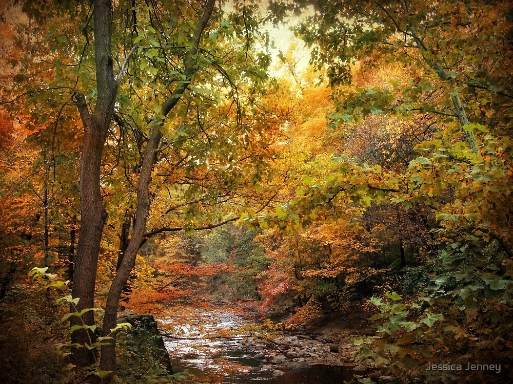 Autumn  River Views by Jessica Jenney