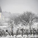 Auersthal im Winter by Dan Shalloe