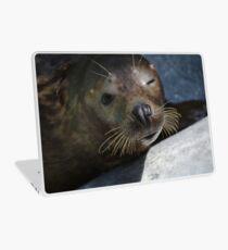 Winking Sealion Laptop Skin