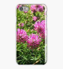 Clover (1) - Trifolium pratense  iPhone Case/Skin