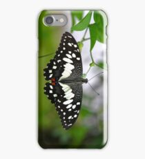 A Butterfly iPhone Case/Skin