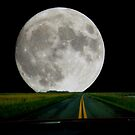 a Moon lit Drive by nastruck