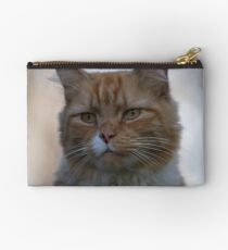 Not Happy about Posing Studio Pouch