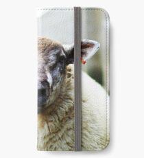 Nobby iPhone Wallet/Case/Skin