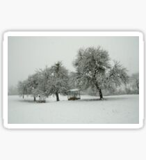 A white morning in the snow Sticker