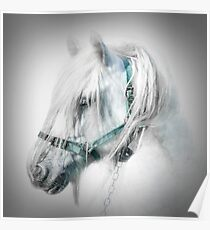 Gypsy portrait Poster