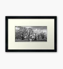 clapham bandstand Framed Print