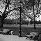 clapham dog walk by Tony Jackson