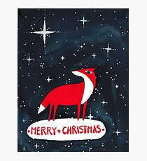Merry Christmas! - 2, Fox and starry night Photographic Print
