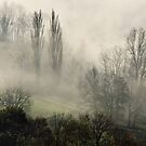 A misty autumn morning by Patrick Morand