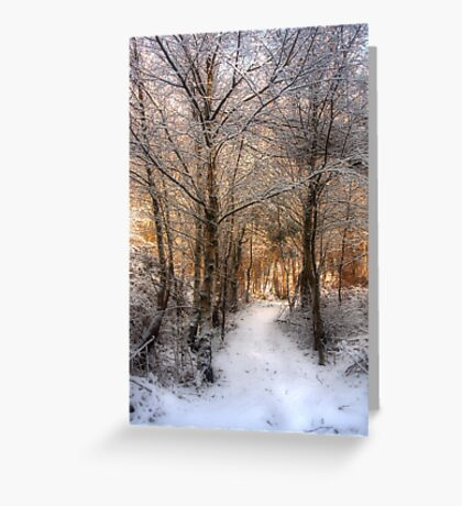 Deer Path in the Snow Greeting Card