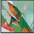 Hummingbird by sebi01