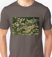 Daisy Fleabane  T-Shirt