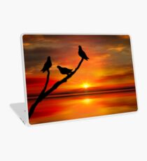 Birds at Sunset point-2 Laptop Skin