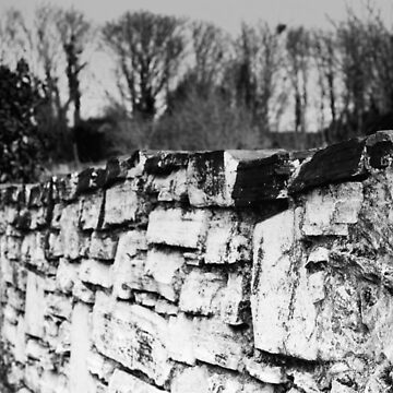 Old stone wall by woodentop