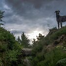 JESSIE AT THE BROCH by joak