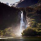 Bowen Falls, Milford Sound by Michael Treloar