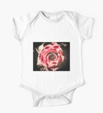 Grungy Rose Kids Clothes