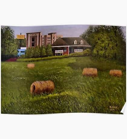 """""""A Little Bit of Country""""... prints and products Poster"""