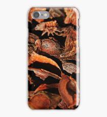 Spice Bark iPhone Case/Skin