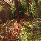 A Mystical Path by patti4glory