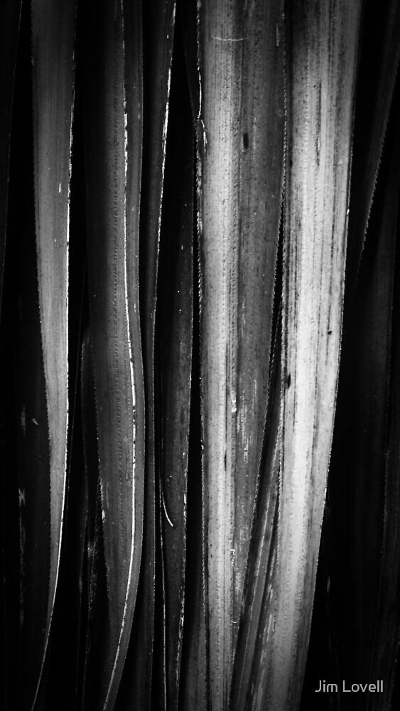 Pandani, Lake Dobson by Jim Lovell