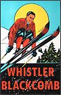 Whistler Blackcomb Vintage Ski Decal by hilda74