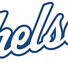 Chelsea Dolphins Uniform Wordmark by chelseadolphins