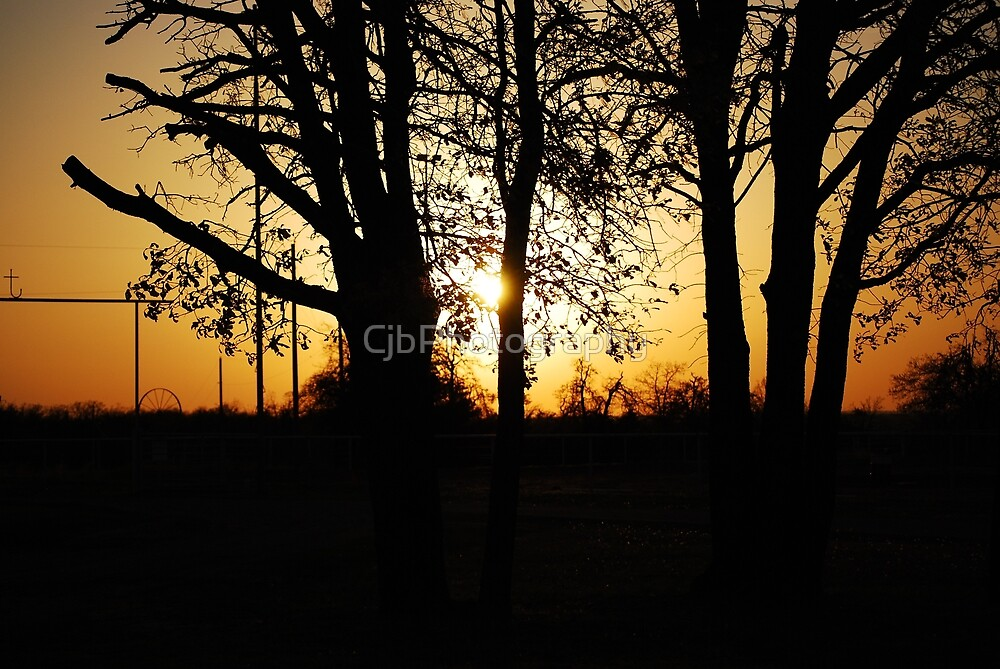 Golden Sun by CjbPhotography
