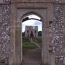 Baconsthorpe Castle, Norfolk. by CjbPhotography