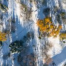 Early snow from above by Oleksii Rybakov
