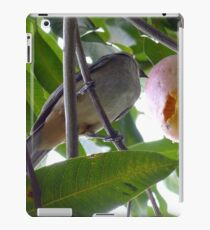 Bird Eating Mango iPad Case/Skin
