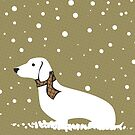 Christmas Weiner Dog by ACImaging