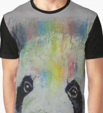 Panda Rainbow Graphic T-Shirt